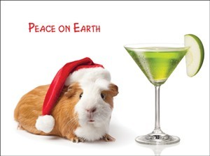 7557 Christmas Card - Guinea pig & apple martini (Pack of 50)