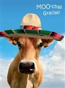 6434 Thank You Card - Moo-chas gracias (Pack of 50)