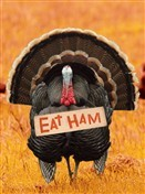 7320 Thanksgiving Card - Turkey with eat ham sign (Pack of 50)