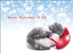7559 Christmas Card - Cat naps under snowfall (Pack of 50)